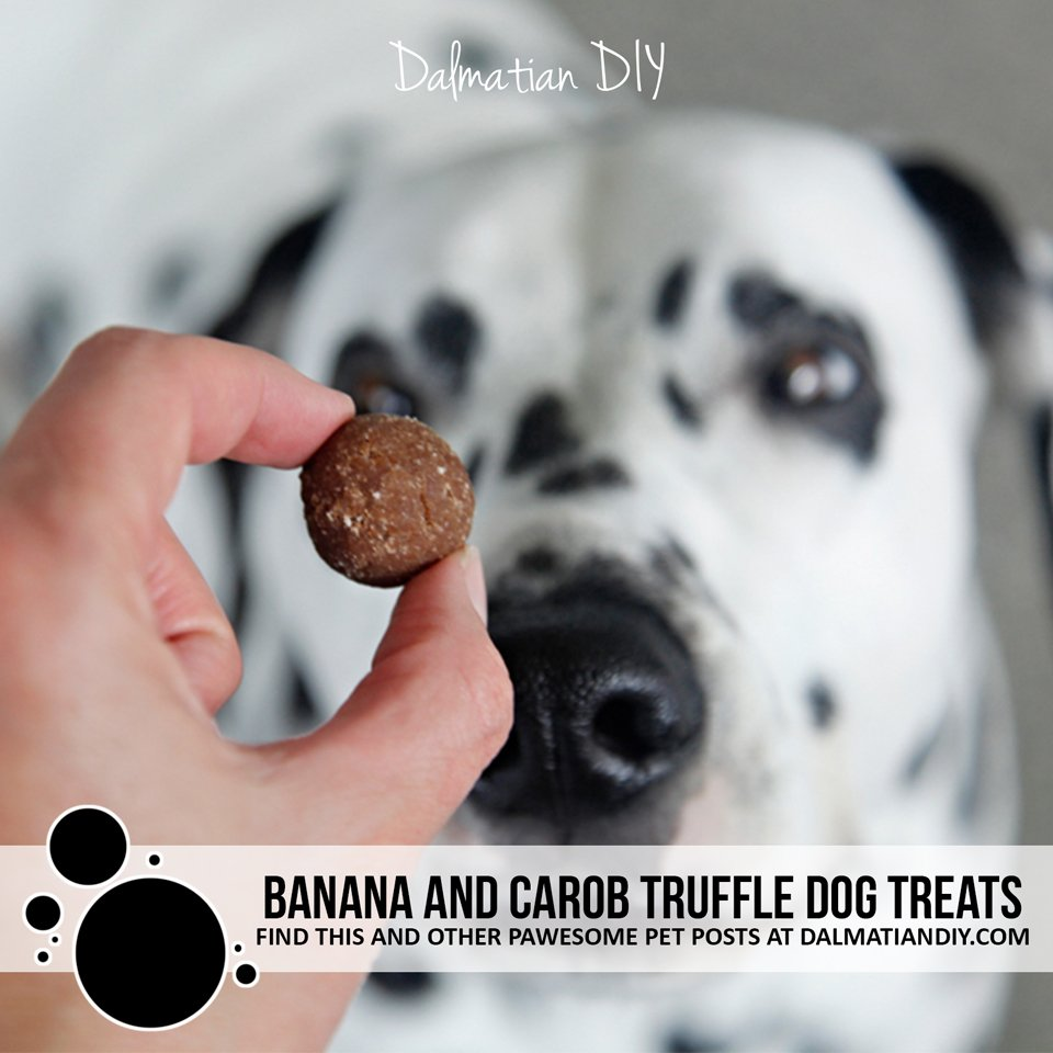 Homemade banana and carob truffle dog treat recipe