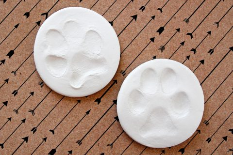 DIY air dry clay dog paw prints