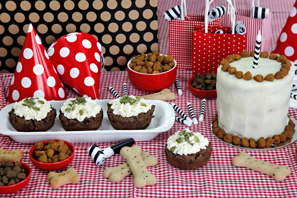 Humphrey's 1st dog birthday party buffet of homemade cake and treats