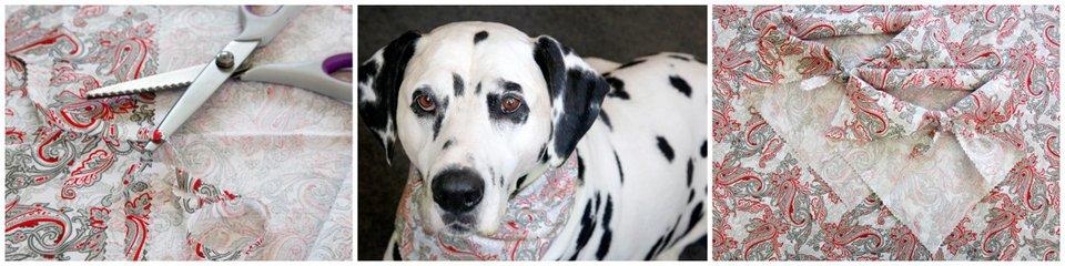 No-sew DIY dog bandanas