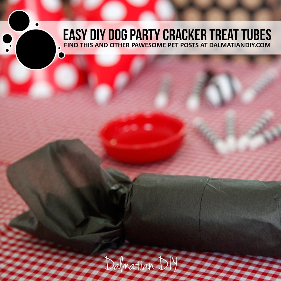Easy DIY dog party cracker treat tube