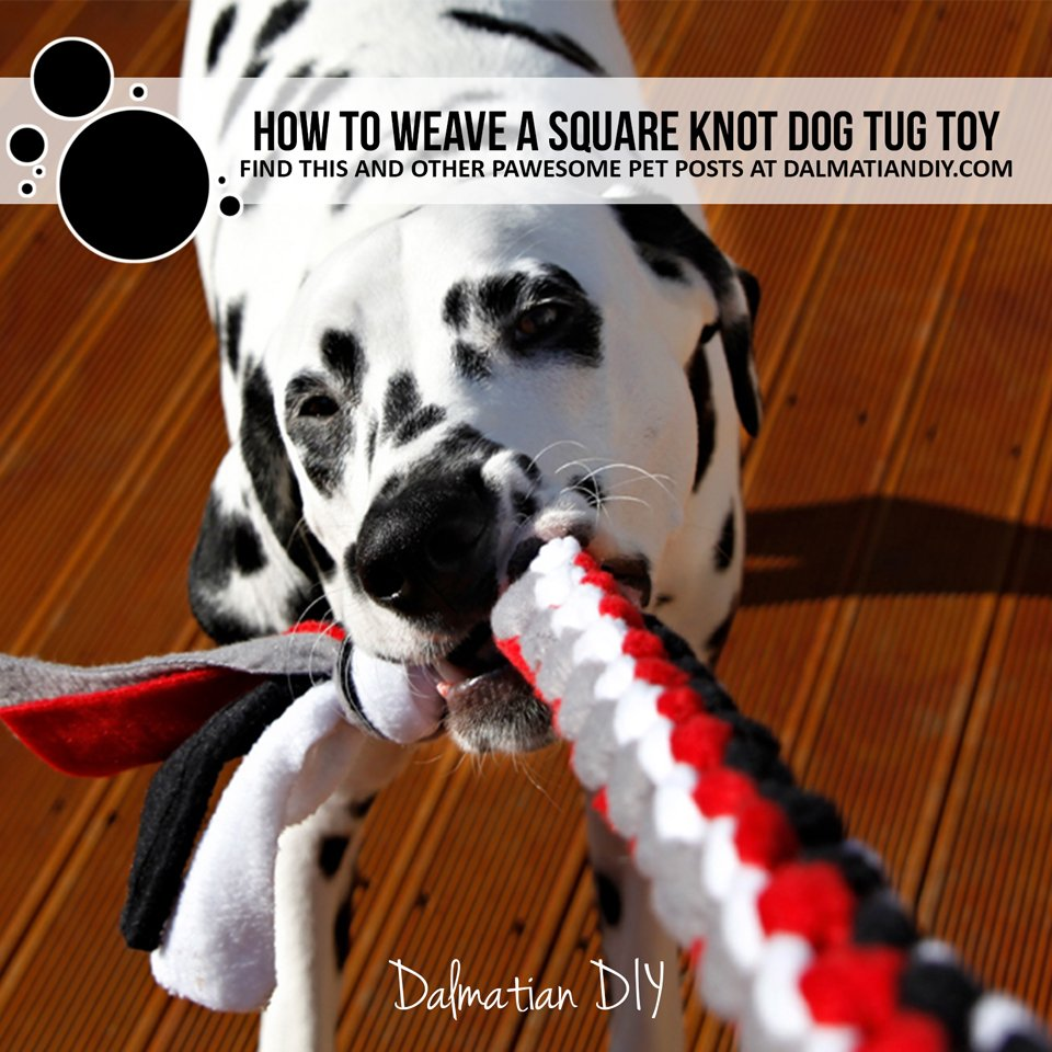 How to make a DIY square knot dog tug toy with fleece