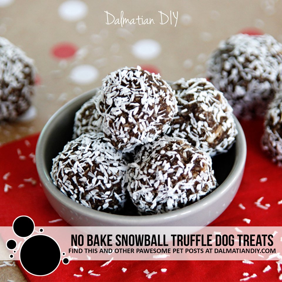 No bake snowball dog treat recipe
