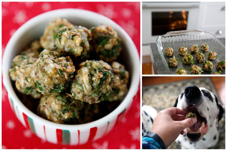 Making parsley meatball dog treats