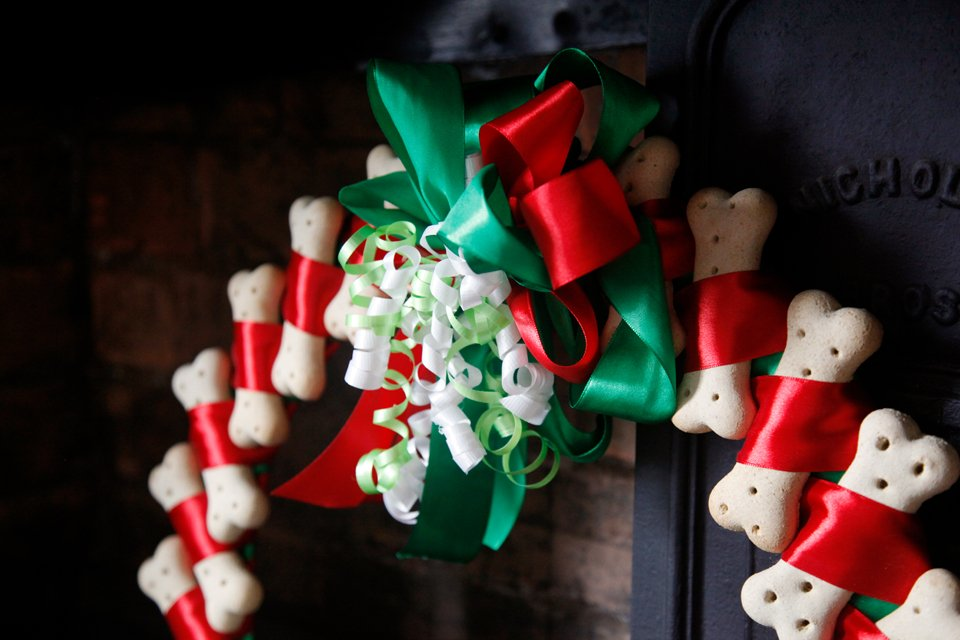 Homemade dog treat Christmas wreath with ribbons