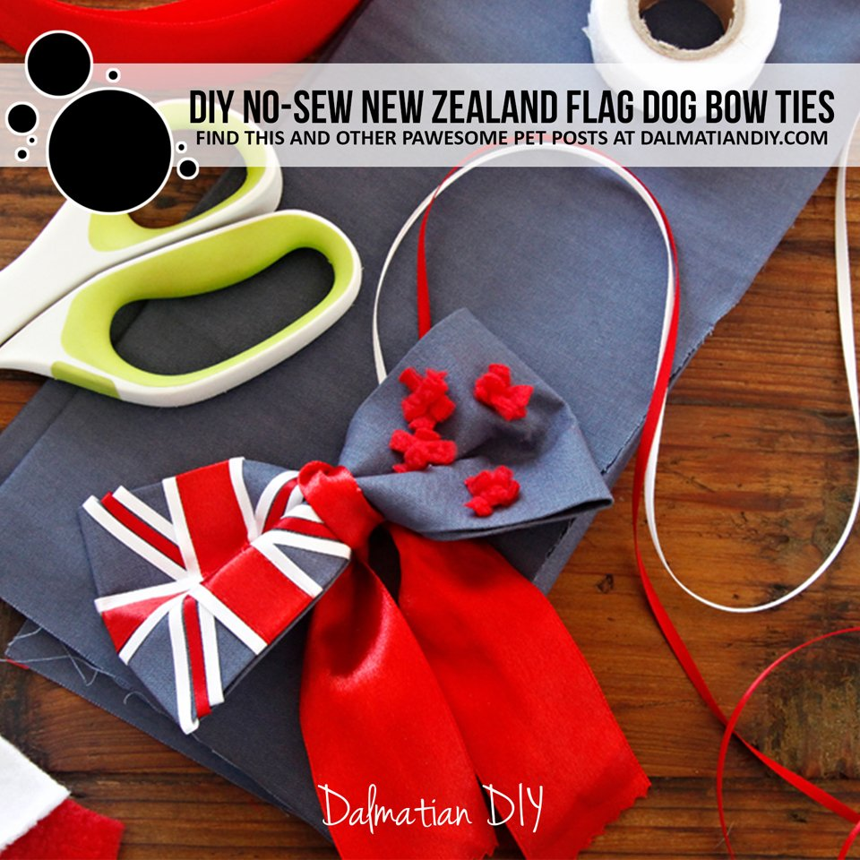 DIY New Zealand flag dog bow tie