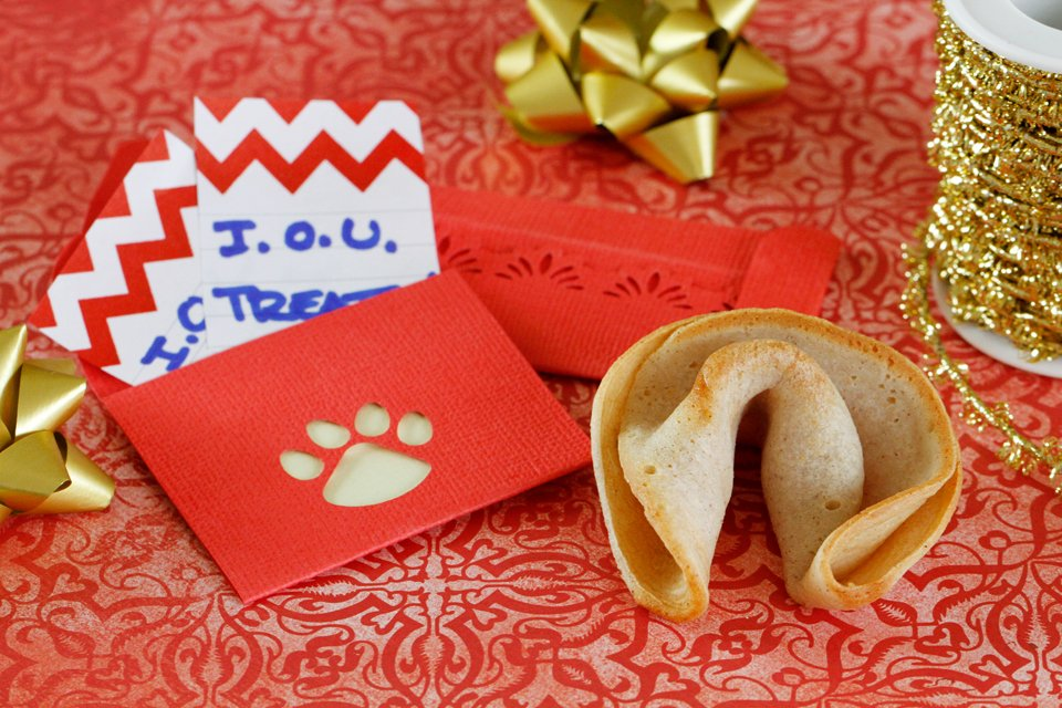 Homemade red envelopes and fortune cookie dog treats for Chinese New Year