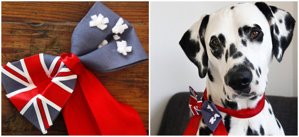 DIY no-sew Australian flag dog bow tie
