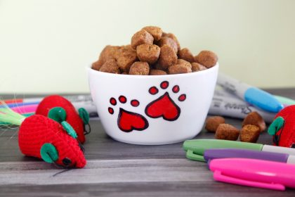 Easy DIY custom Sharpie marker pet bowl with heart pat prints
