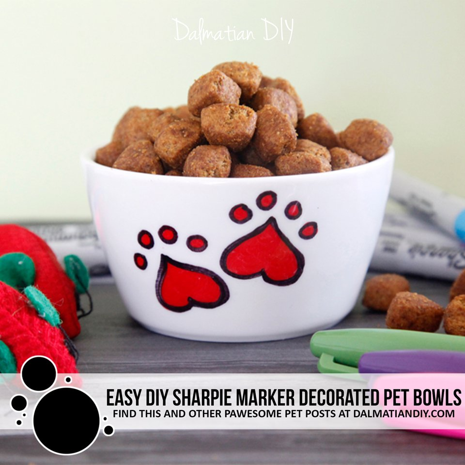 Easy DIY custom Sharpie marker pet bowls