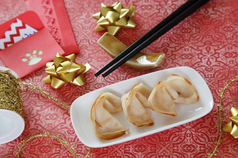 Homemade dog fortune cookies with sliced meat