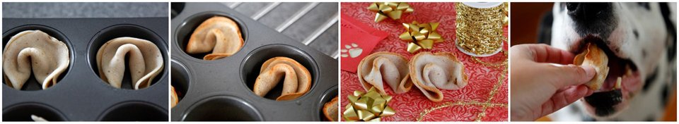 How to make dog-friendly fortune cookies