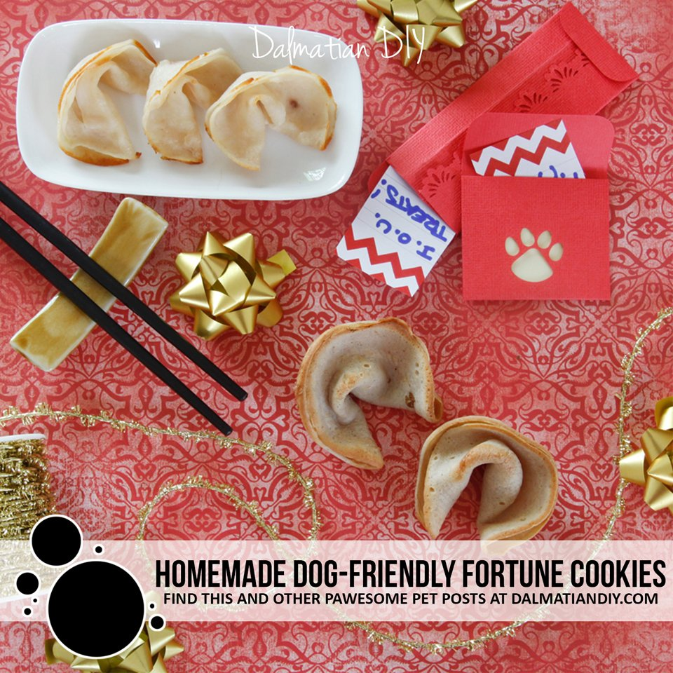 Two ways to make dog-friendly fortune cookie treats