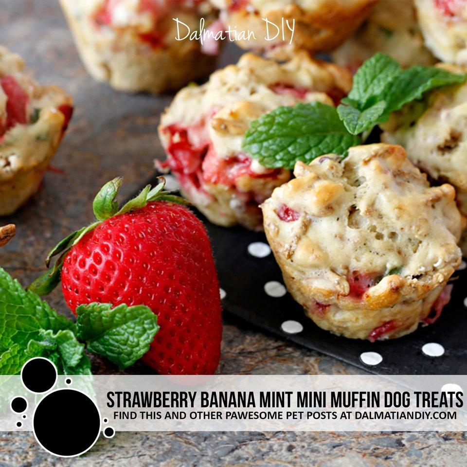 Strawberry banana mint mini muffin dog treat recipe