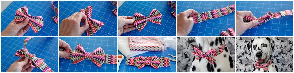 How to make a DIY dog bow tie with slide and fancy dress collar