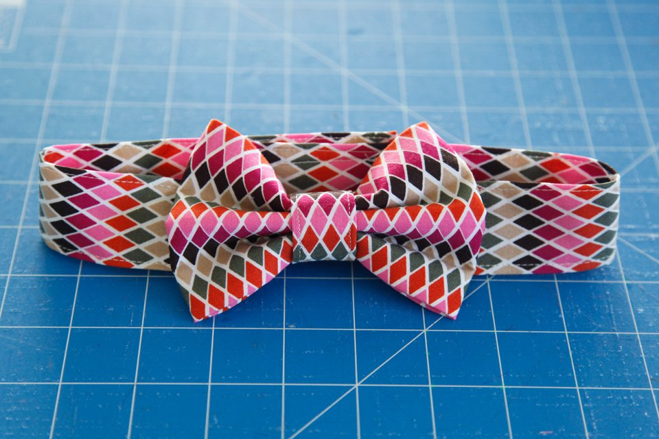 DIY dog bow tie and fancy dress collar