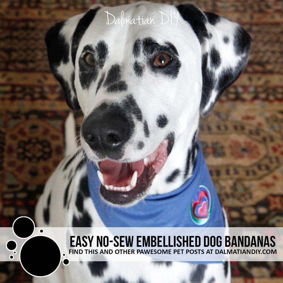 Easy DIY ways to embellish a no-sew dog bandana