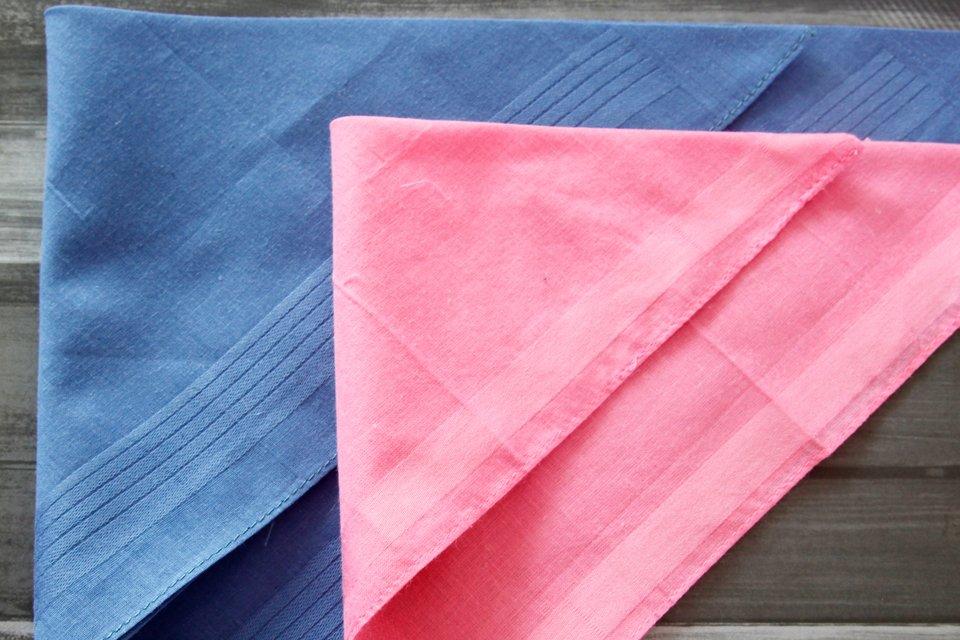 Using handkerchiefs as no-sew dog bandanas