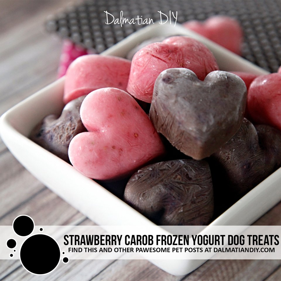 Homemade strawberry and carob frozen yogurt dog treat recipe