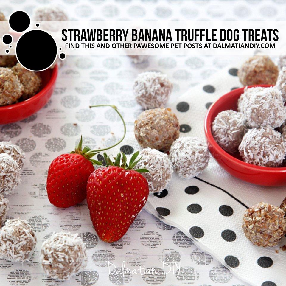 Easy no-bake strawberry banana truffle dog treat recipe