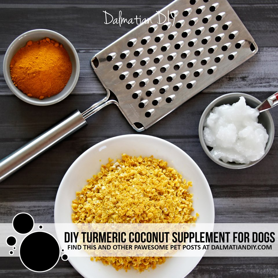DIY turmeric and coconut oil golden paste sprinkles for dogs