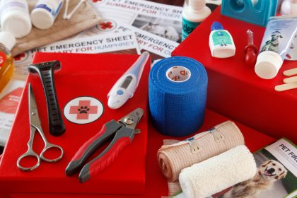 DIY pet first aid kit for dogs and cats