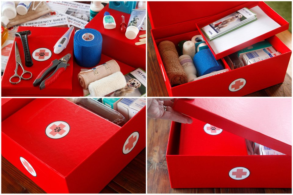 DIY storage box for family and pet first aid supplies