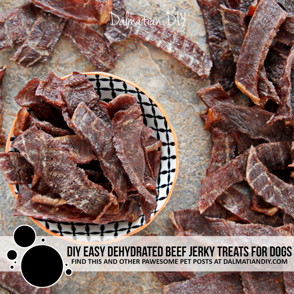 How to make easy DIY beef (or lamb) jerky dog treats