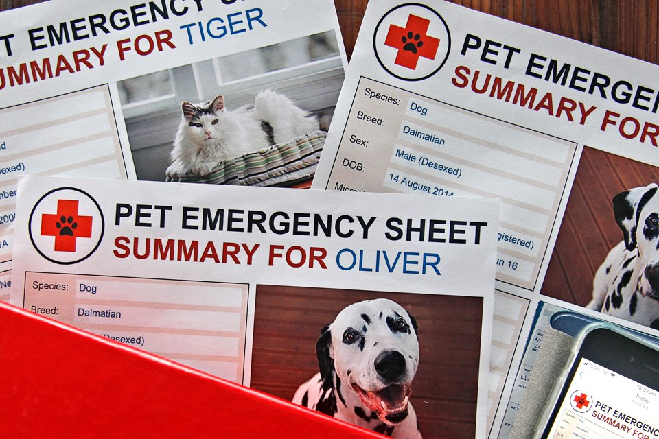 Free printable pet emergency information and record sheets