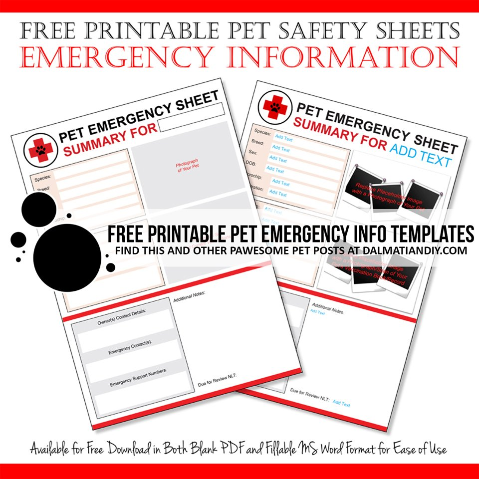 Free printable pet safety sheets for emergency information and records