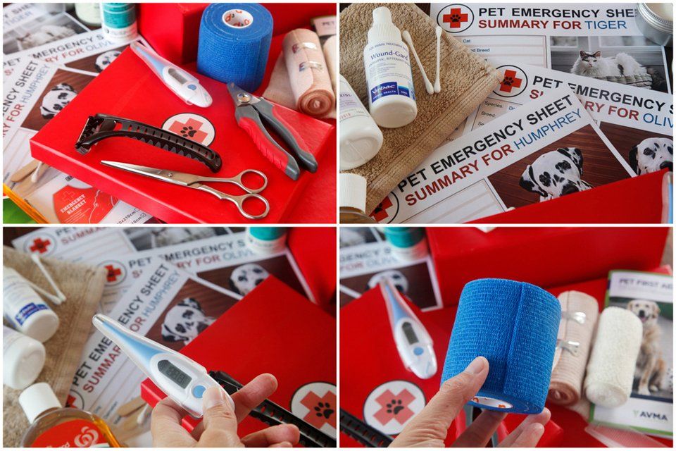 Items in a home first aid kit for pets