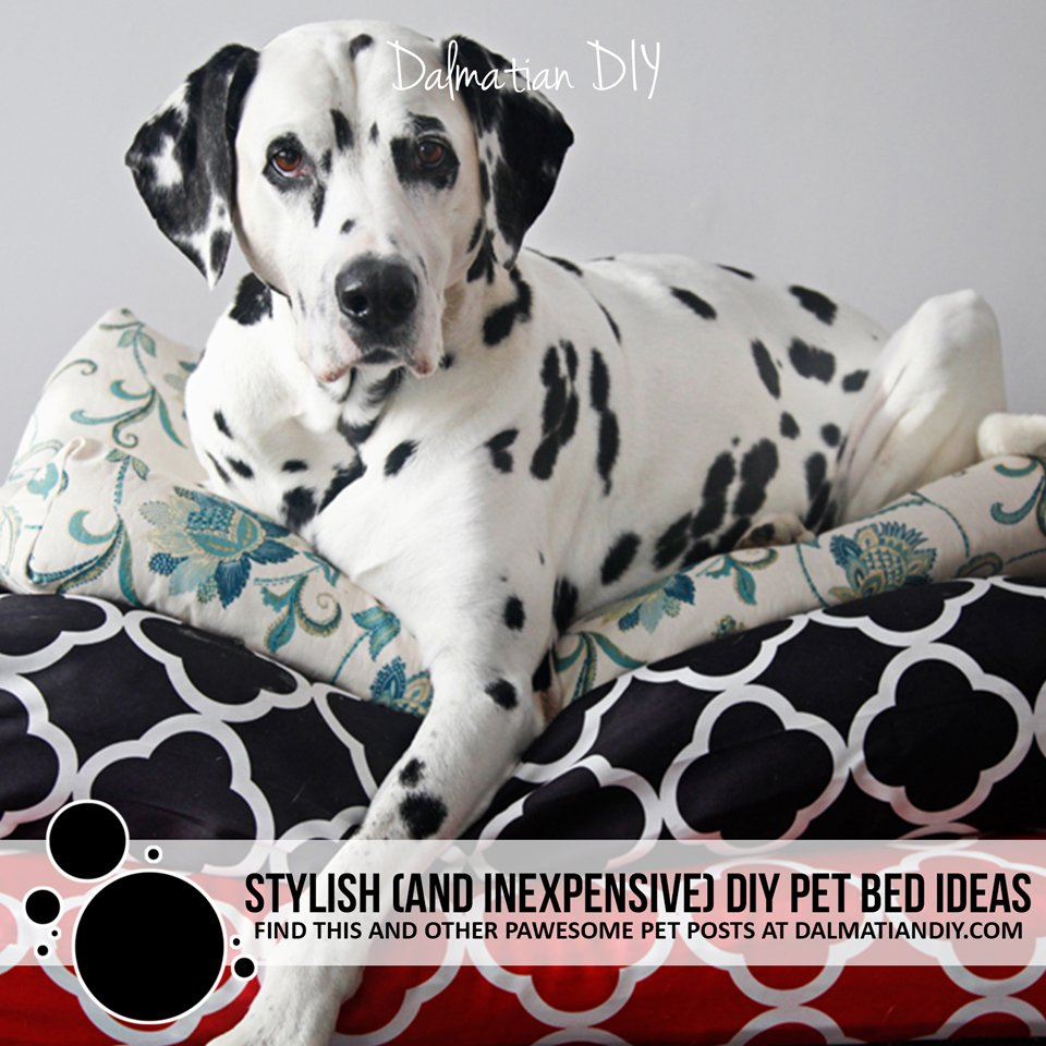 Stylish and inexpensive DIY pet beds