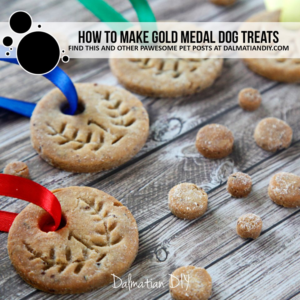 How to make DIY homemade gold medal dog treats or cookies