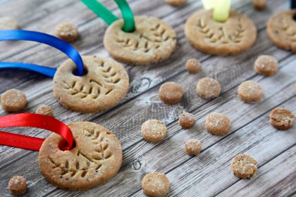 DIY homemade gold medal dog treats or cookies
