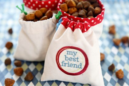 How to sew a drawstring dog treat bag