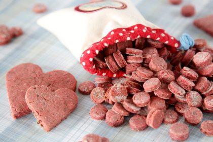 Easy homemade salmon dog treat recipe