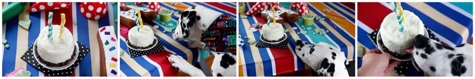 Humphrey's second dog birthday cake