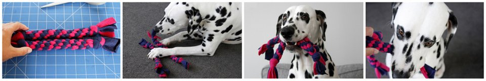 Dalmatian dog playing with homemade spiral tug toys