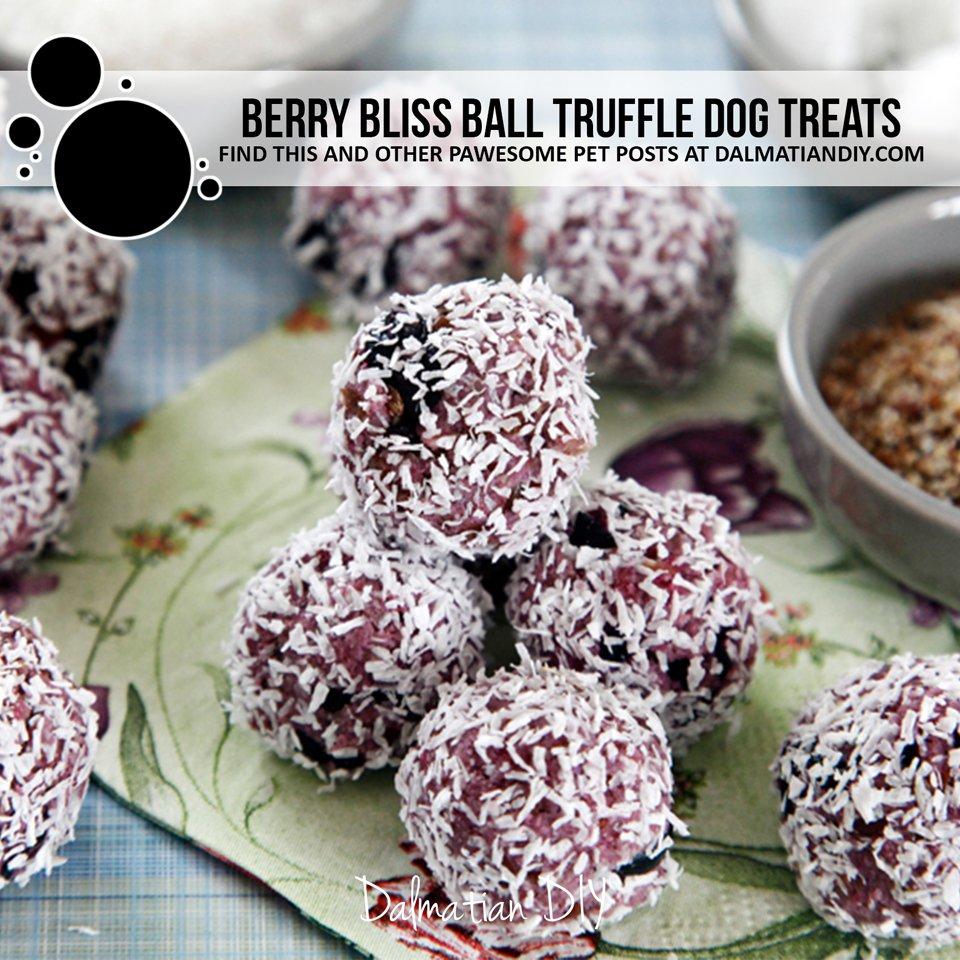 No-bake berry bliss ball truffle dog treat recipe