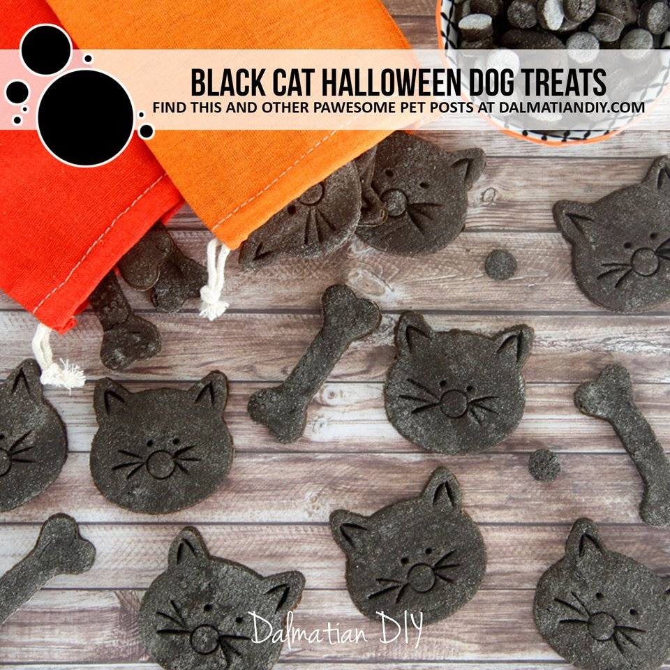Homemade Halloween dog treat black cat cookie recipe and decorating instructions