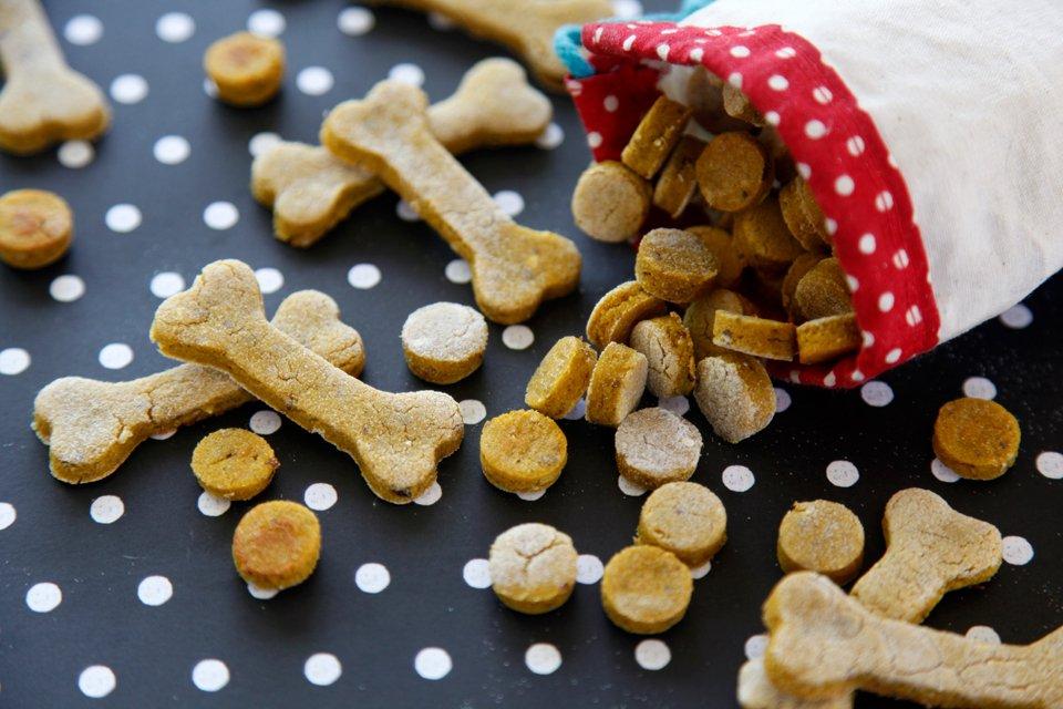 Easy homemade pumpkin and salmon dog treats