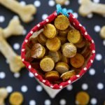 Easy homemade pumpkin and salmon dog treat recipe
