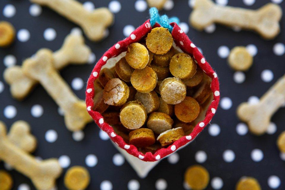 Easy homemade pumpkin and salmon dog treat recipe