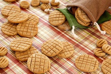 Homemade autumn apple pie baked biscuit dog treats