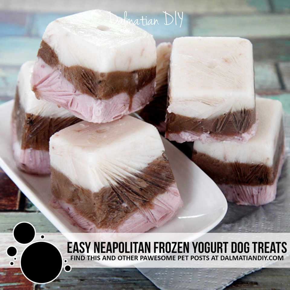 Easy Neapolitan frozen yogurt dog treats