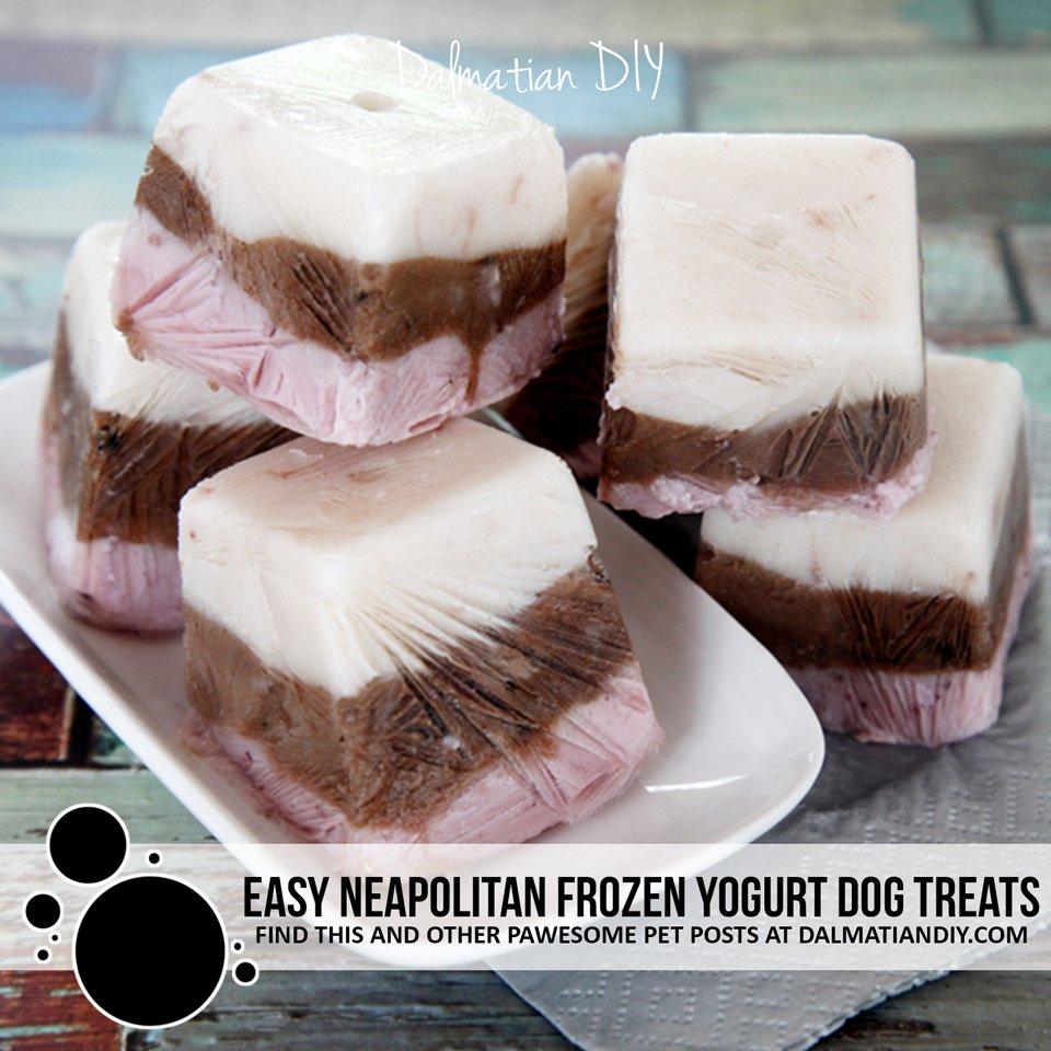 Easy Neapolitan frozen yogurt dog treats
