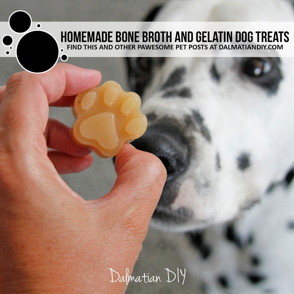 Homemade bone broth and gelatin gummy dog treats