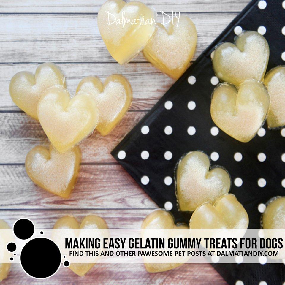 How to make easy homemade gelatin gummy dog treats