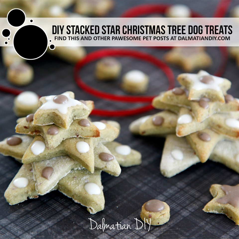DIY stacked star Christmas tree dog treats