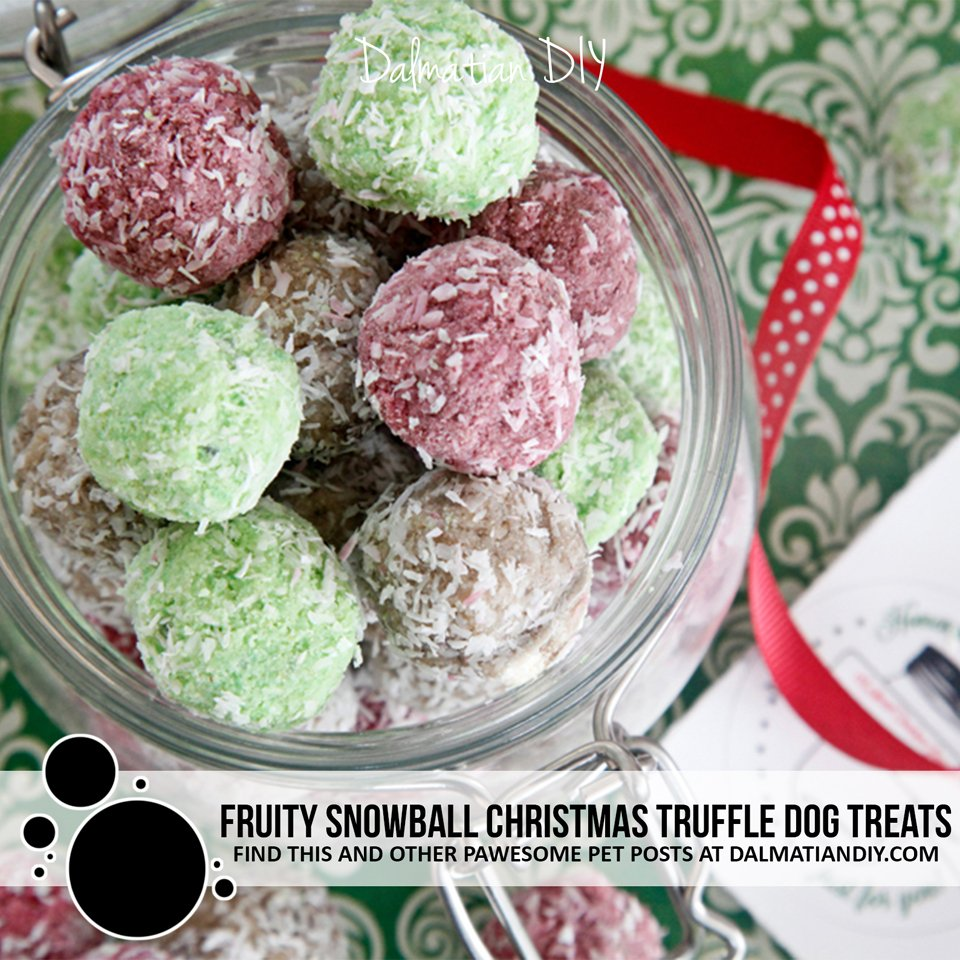 Homemade fruit snowball Christmas truffle dog treat recipe